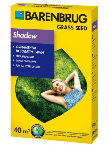 Trawa Do Cienia Barenbrug Shadow Gazon 1 kg
